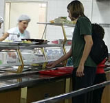 pest control for restaurants kitchens and canteens